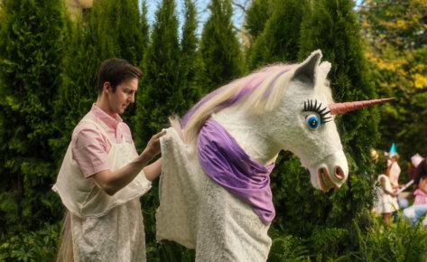 Gain 'Unicorn'